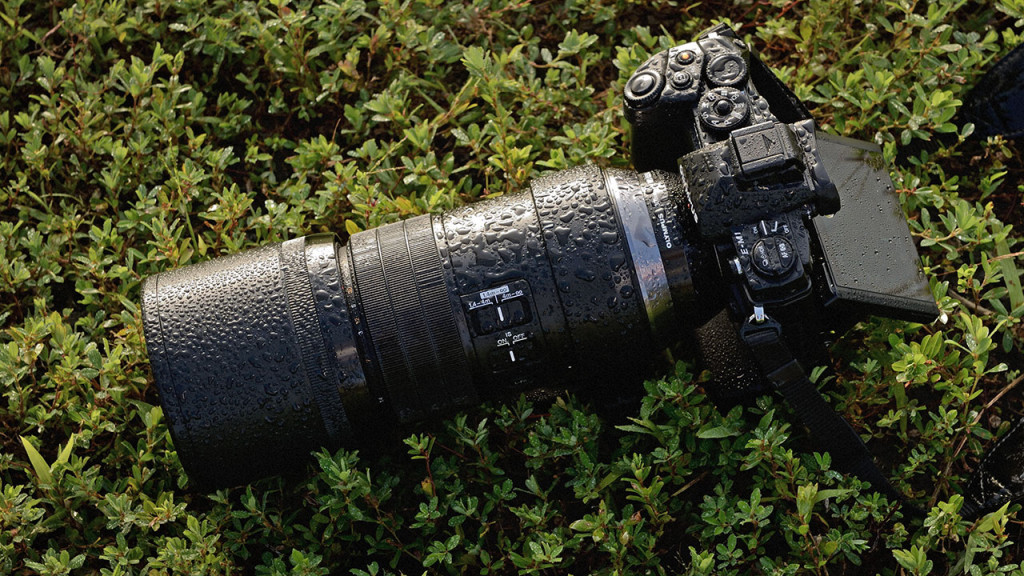 Olympus releases new firmware updates to improve compatibility with the 300mm f/4 Pro lens